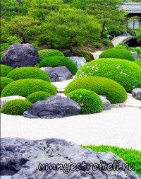 Ландшафтный дизайн и ландшафтное проектирование дизайна