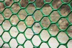 Вид полимерной сетки рабицы
