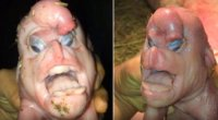 Свинья с человеческим лицом и гениталиями на лбу.