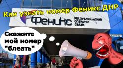 Как узнать свой номер Феникс ДНР